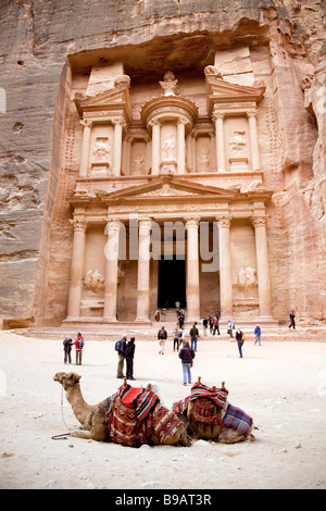 two camels in front of the Treasury, Petra Jordan - Stock Photo