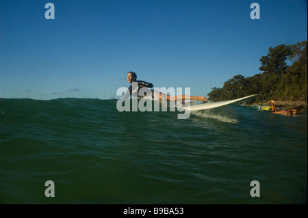 wipe out learner surfer - Stock Photo