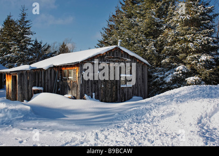 View of snow drifts snowy wooden cottage woods in winter Upper Peninsula Michigan in USA no not people nobody isolated - Stock Photo