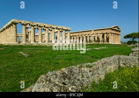 Temples of Neptune and Era Basilica Paestum Salerno Italy - Stock Photo
