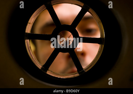 HOUSE SPIDER Tegenaria domestica in plughole - Stock Photo