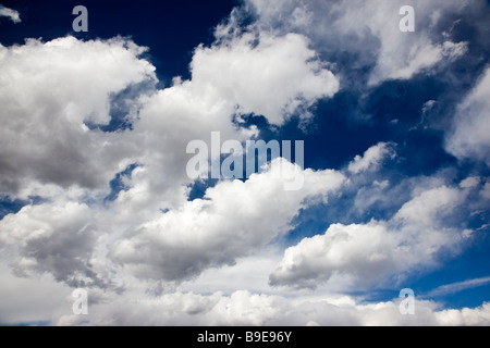 White puffy clouds on a Colorado blue sky day - Stock Photo
