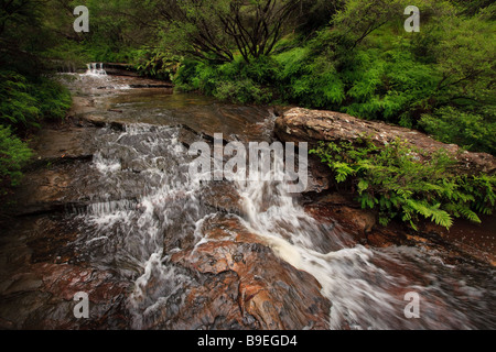Water cascading over rocks in a mountain stream - Stock Photo