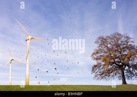 Falling leaves, tree, Wind Turbines Stock Photo