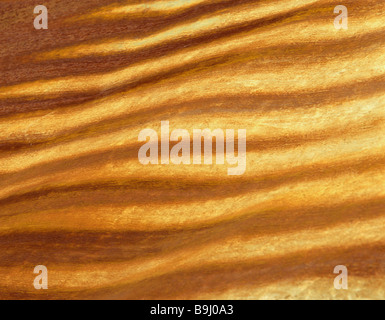 Rust streaks on an old tin roof, background - Stock Photo