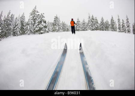 Low angle view of cross country ski tips and one young woman nordic skiing on a cross country trial in the snow - Stock Photo