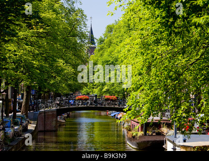 looking down a canal in amsterdam in spring - Stock Photo
