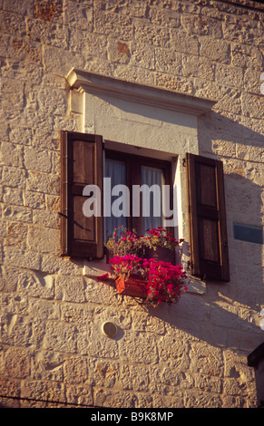 Window with window box containing red geraniums - Stock Photo