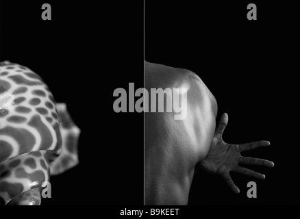 Comparison between a shell and man making the similar shape - Stock Photo