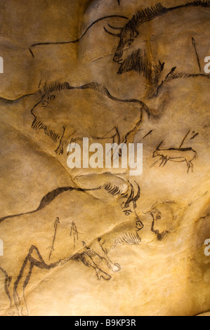France, Ariege,Tarascon sur Ariege, Parc de l'Art Prehistorique (The Prehistoric Art Park) - Stock Photo