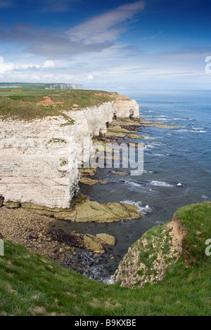 A view from Breil Nook of the chalk cliffs that are part of the Flamborough Headland Heritage Coast, East Riding - Stock Photo