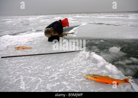 Canadian Ranger fishing for salmon on sea ice, Canadian Arctic, Canada - Stock Photo