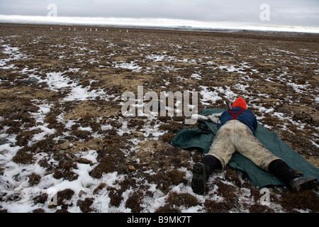Canadian Ranger lying on front aiming rifle at targets on horizon, Canadian Arctic, Canada - Stock Photo