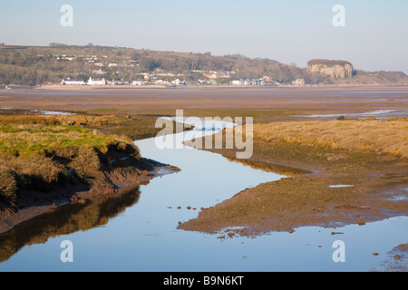 Afon Nodwydd River channel through coastal salt marsh saltings at low tide in AONB. Red Wharf Bay Anglesey North - Stock Photo