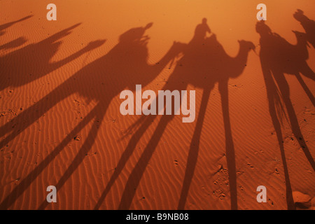Shadows of camel trekkers in the desert - Stock Photo