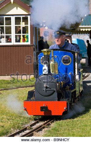 Train driver taking passengers on a live steam 5' guage model railway. Steam loco at Hereford Society of Model Engineers, - Stock Photo