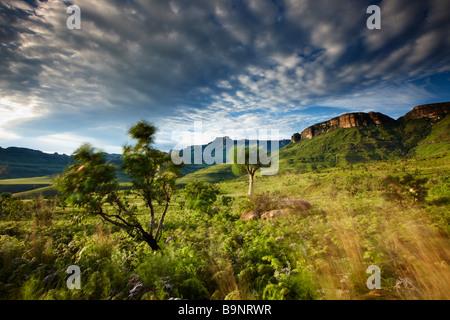 the Ampitheatre, Royal Natal National Park, Drakensberg Mountains, KwaZulu Natal, South Africa - Stock Photo