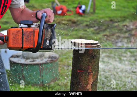 Chainsaw in action - Stock Photo