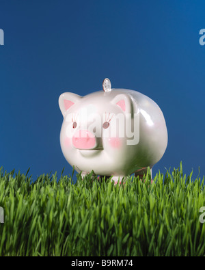 piggy bank in grass with coin money and blue sky - Stock Photo