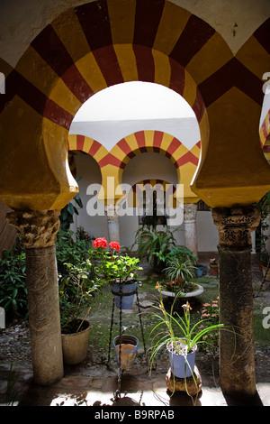 Baños Árabes de Santa María Siglo X Córdoba Andalucía España Arab Baths of Santa Maria Century X Cordova Andalusia - Stock Photo
