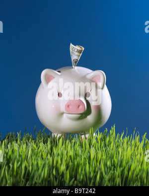 piggy bank in grass with dollar bill money and blue sky - Stock Photo