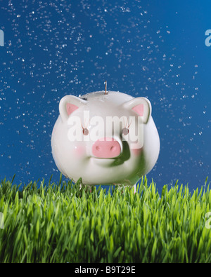 piggy bank in grass with coin money being sprinkled with water - Stock Photo