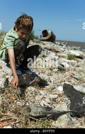 Boy crouching on polluted shore, poking dead fish with stick - Stock Photo