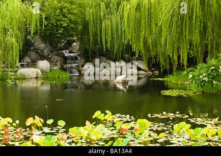 Chinese Garden of Friendship Sydney Australia Stock Photo: 23381570 ...