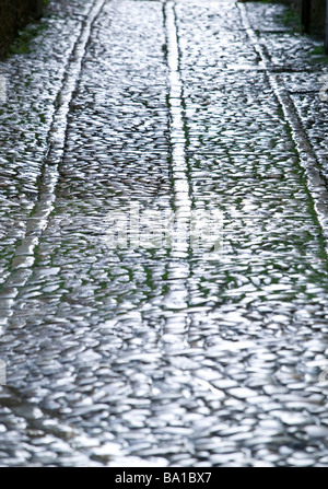Street pave causeway reflexes cold solitude way - Stock Photo