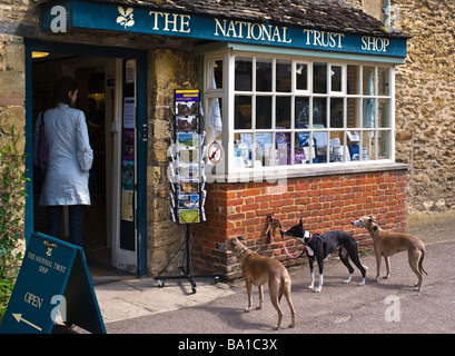 Dogs in waiting outside National Trust shop in Lacock Wiltshire England UK EU - Stock Photo