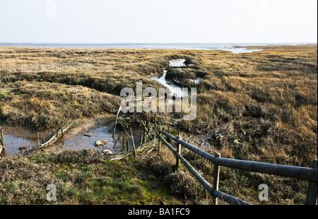 Saltings on the Essex coast - Stock Photo