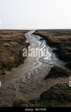 A muddy creek on the Essex coast. - Stock Photo