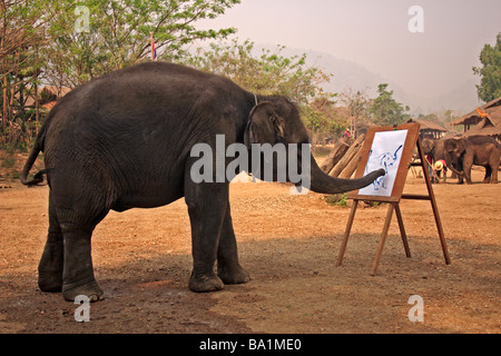 An Elephant Painting Chiang Mai Northern Thailand South East Asia - Stock Photo