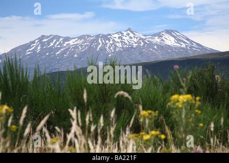 Mount Ruapahu from national park - Stock Photo