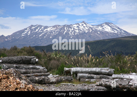 Mount Ruapahu from the overlander train at national park staion newzealand - Stock Photo