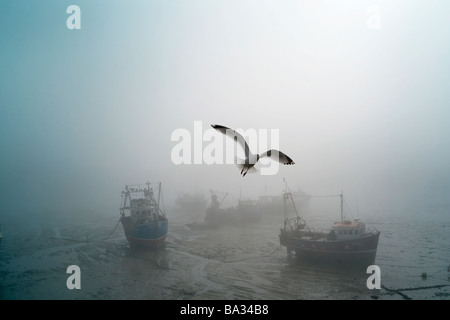 Fishing boats lie aground in sea fog - Stock Photo