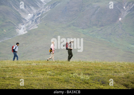 Female US National Park Interpretive Ranger leads group on a *discovery hike* in the Eielson area Denali National - Stock Photo