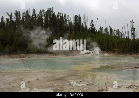 Norris Geyser Basin with steam venting from its geysers in Yellowstone National Park North America - Stock Photo