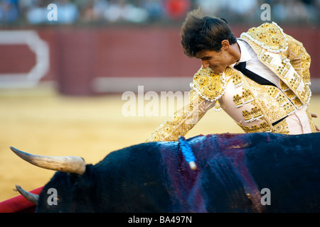 The Spanish bullfighter Cesar Giron Real Maestranza bullring Seville autonomous community of Andalusia southern - Stock Photo