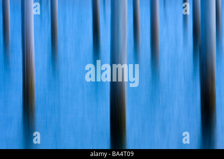 Abstract image of piers in water - Stock Photo