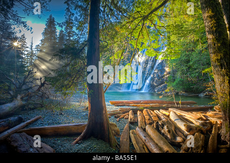 Virgin Falls viewed from the forest with rays of sunlight streaming through the trees and driftwood strewn on the - Stock Photo