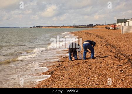 A couple search the beach at HIll Head on Southampton Water for interesting shells - Stock Photo