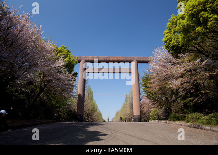 Tall wooden gate Yasukuni Jinja in Tokyo in cherry blossom season - Stock Photo