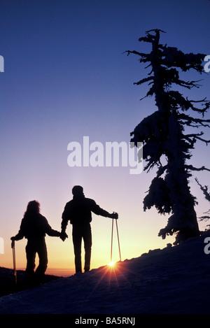 Skiers enjoying scenic view - Stock Photo