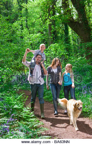 Dog Family Walking In Forest With Bluebell Flowers