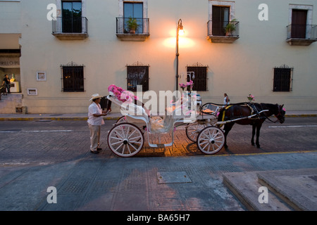 A carriage driver with horse and carriage in Merida Mexico - Stock Photo