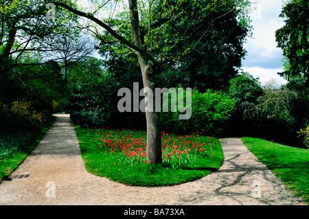 Paris France, Urban park, Landscape, 'Fork in the Road' in the 'Bagatelle Garden'  Scenery, Urban Garden Landscaped - Stock Photo