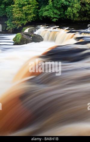 Upper Aysgarth Falls in full spate after a few days heavy rain, Aysgarth, Wensleydale, Yorkshire Dales National - Stock Photo