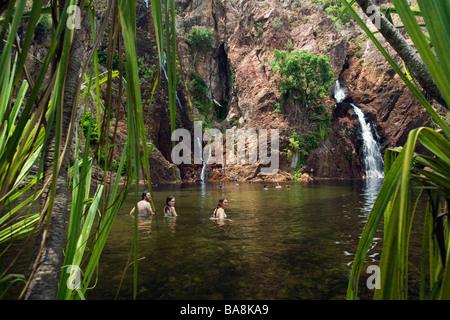 Wangi Falls. Litchfield National Park, Northern Territory, AUSTRALIA. - Stock Photo