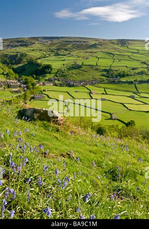 Bluebells on a Hillside above the Village of Gunnerside, Swaledale, Yorkshire Dales National Park, England, UK - Stock Photo